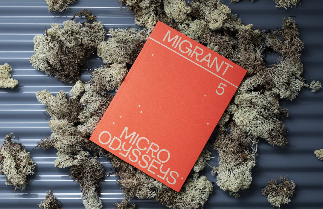 Migrant Journal, Issue 5, « Micro Odysseys » ©Migrant Journal Press
